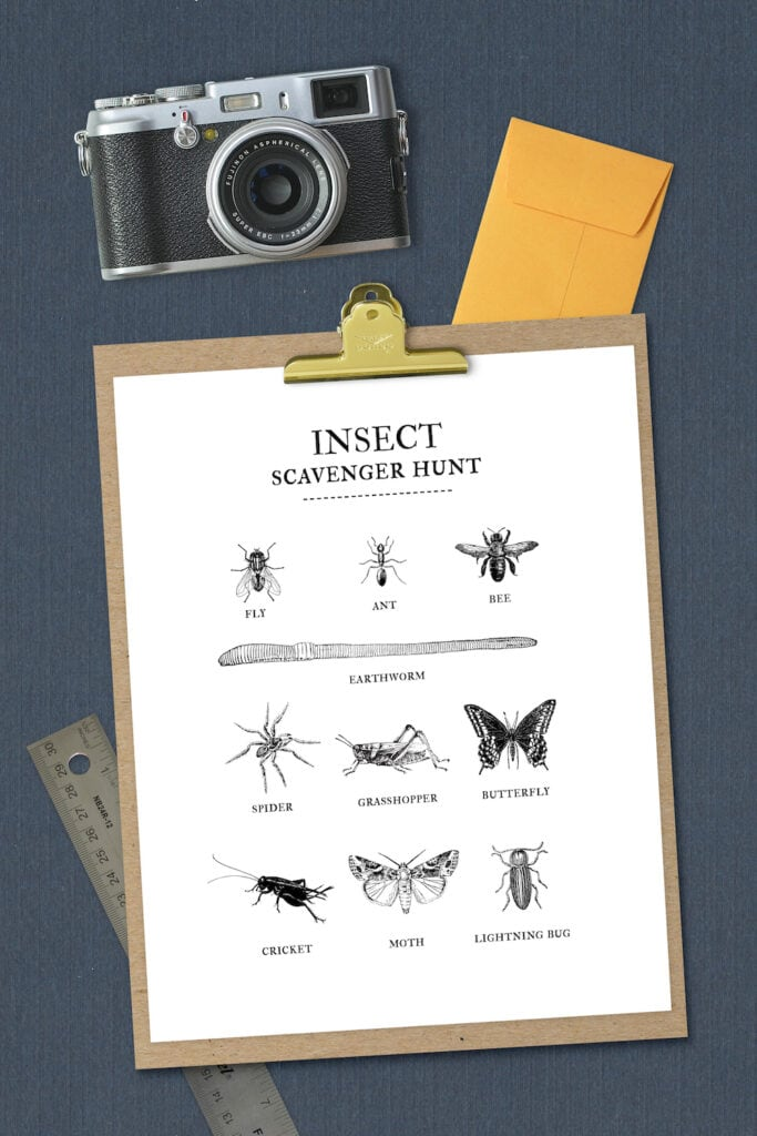 insect list on clipboard against navy background