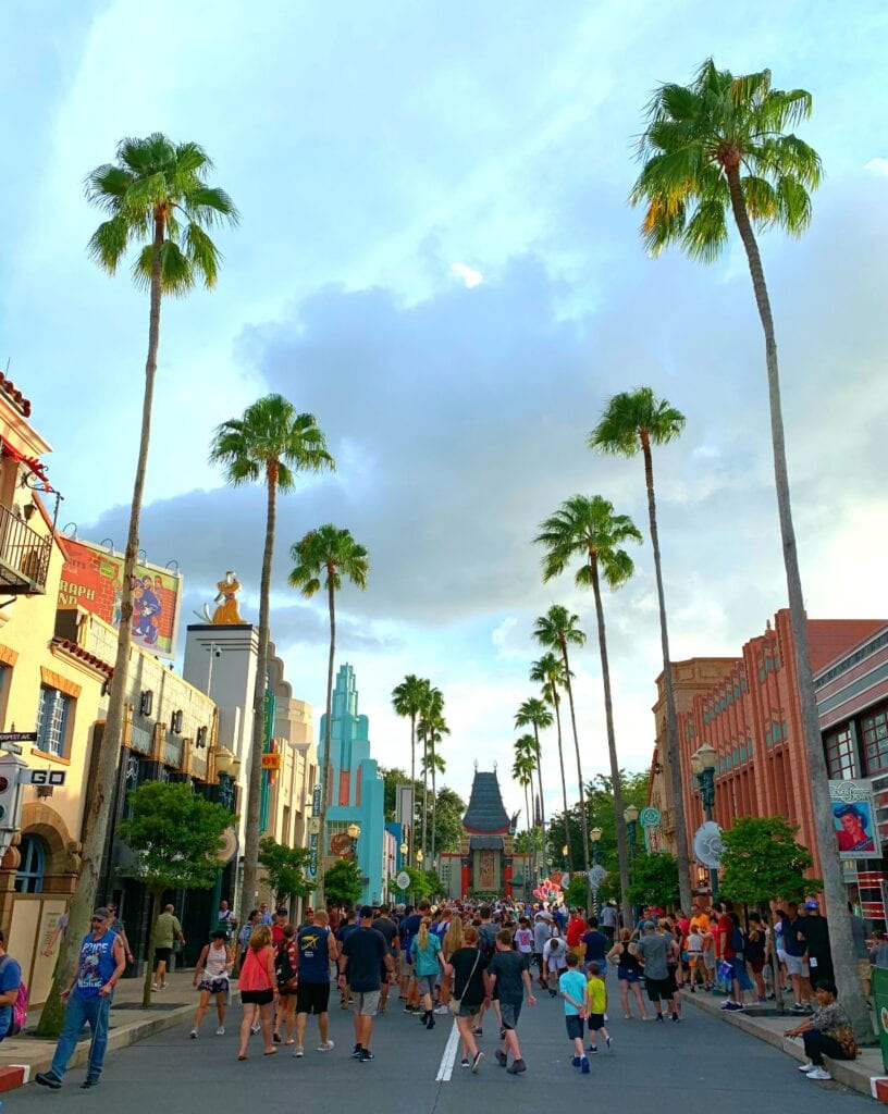 road through Disney's Hollywood Studios
