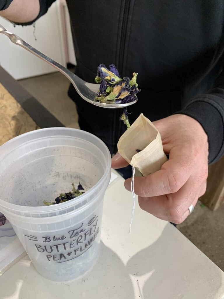 man scooping butterfly pea flower into a tea bag