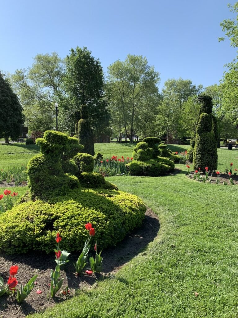 garden topiaries on green grass against blue sky
