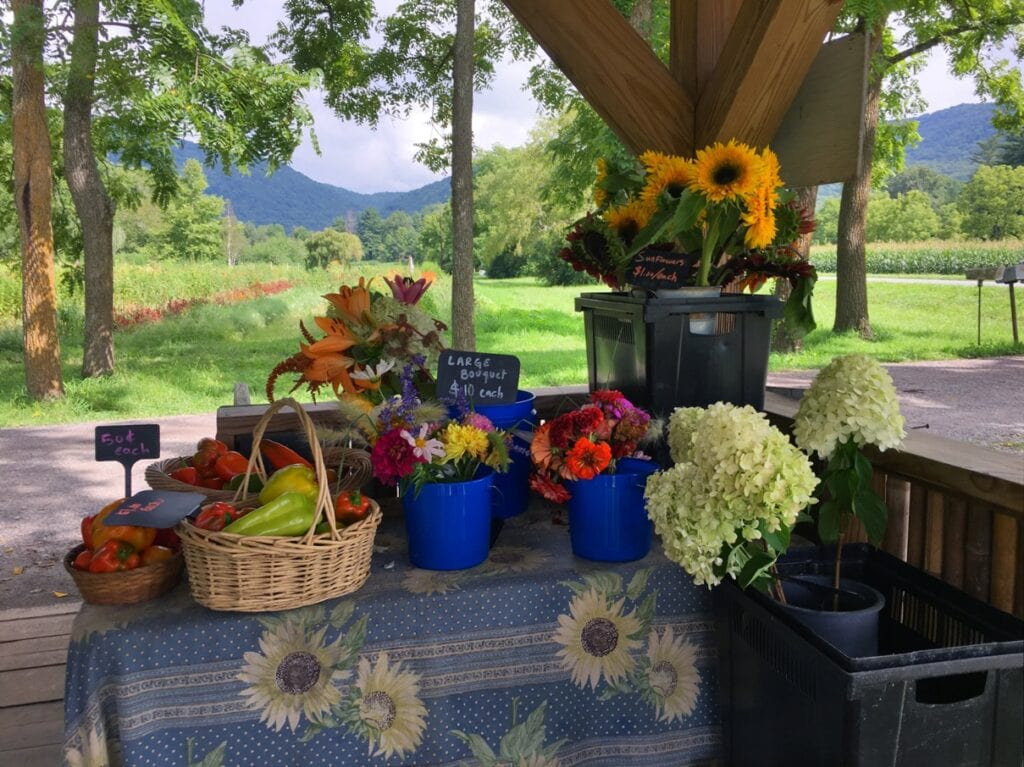 farmstead with produce and flowers with mountains in background